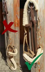 Halfter und Strick richtig aufhängen, Unfallgefahr minimieren.