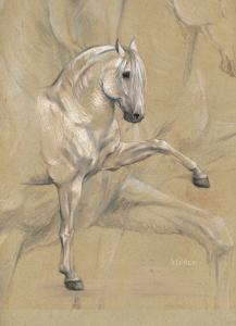 Zeichnung: Maria Mähler