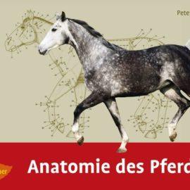 """Neu im Shop: """"Anatomie des Pferdes"""" von Peter C. Goody"""