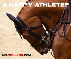 Bild eines Springpfferdes, das mit extremer Rollkur geritten wird