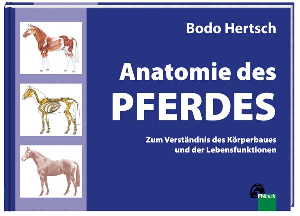 Standardwerk: Die Anatomie des Pferdes   Dressur-Studien