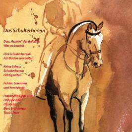 Junge Pferde: Reif für das Schulterherein?